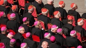 130228083733-cardinals-story-top