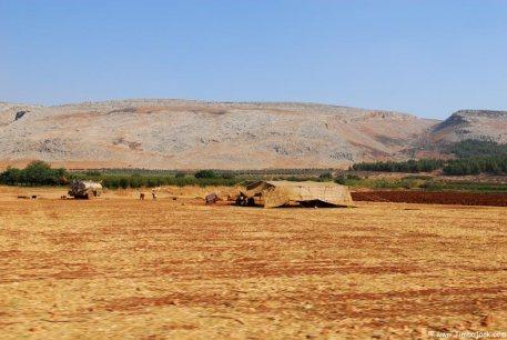 In de dode steden in Syrië rondom de stad Ma'arrat al-Numan,  halverwege tussen Aleppo en Hama, huren vele landeigenaren lokale families in tenten. Ze waken over alles wat groeit en helpen met de oogst en de teelt van fruit, noten en groenten. Deze regio is beroemd om granaatappels, amandelen en pistachenoten. In Qâra helpen ruim 200 vluchtelingen en lokale bewoners de gemeenschap van Deir Mar Yacub met de oogst.
